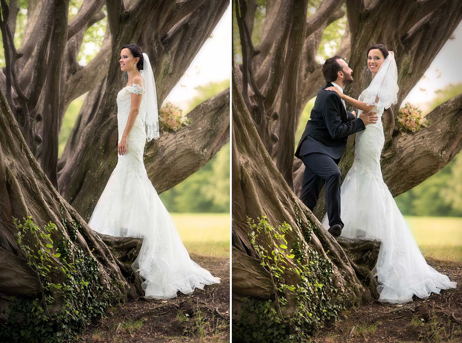 12 svatebni foto nevesta zenich u stromu jihocesky kraj