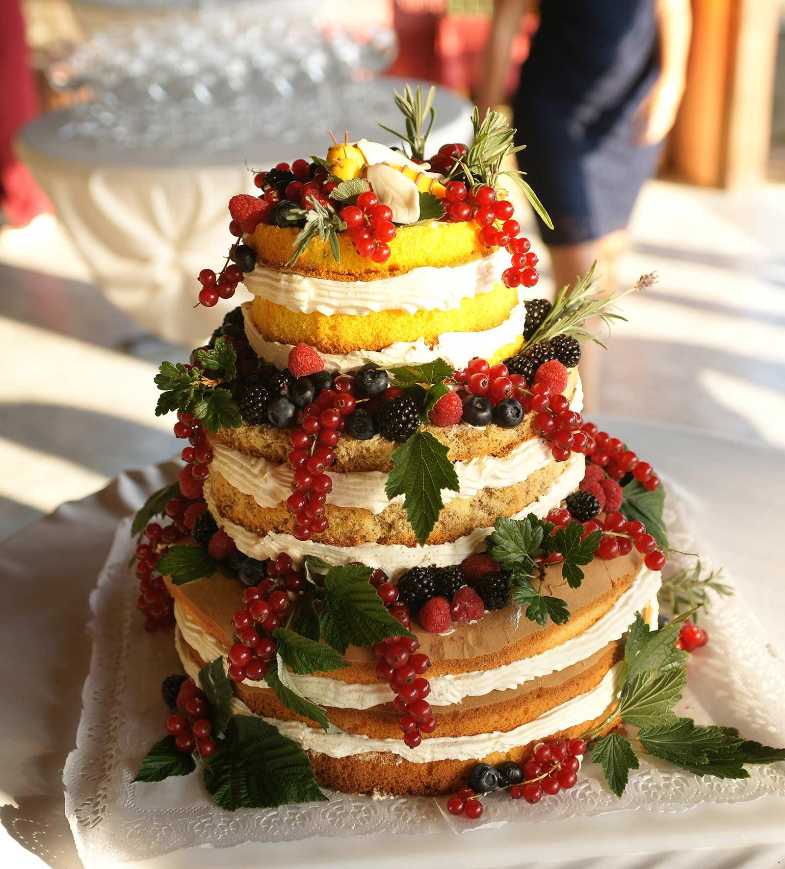 40 svatebni dort fotograf ales motejl jihocesky kraj