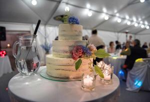 43 svatebni fotografovani svatebni dort lipno nad vltavou okres cesky krumlov jihocesky kraj