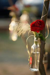 46 svatebni detail svatebni fotograf ales motejl jizni cechy